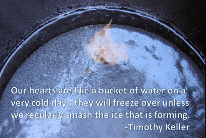 Frozen Heart Bucket